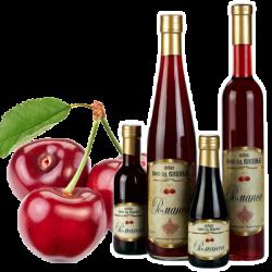 Voćna vina od višnje